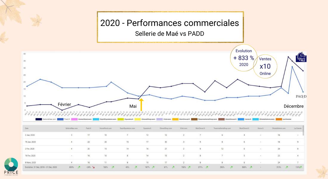 E-commerce : Performances commerciales 2020 selleries en ligne